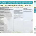 03 - SWOT Analysis